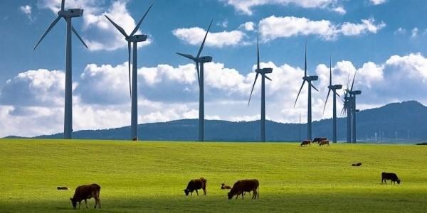 Rüzgar enerjisi santralleri