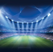 Stadiums & Sport Facilities